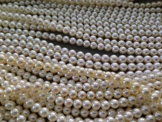 真珠の選び方