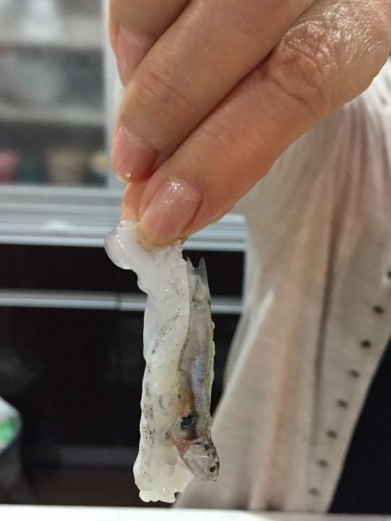 イカゲソに小魚が